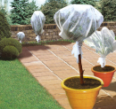 Plasticulture & protection Forçage et croissance