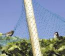 Protection oiseaux