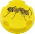 Appat-fourmis gel boite