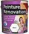 Peinture renovation multi-surfaces